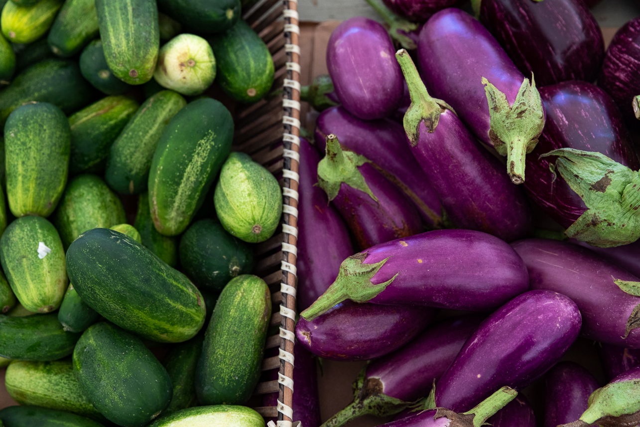 Cucumbers and eggplant from Rosebank Farms.