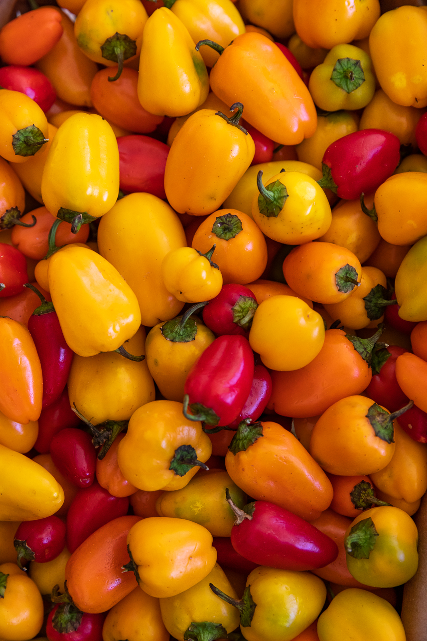Cupid peppers from Rosebank Farms.