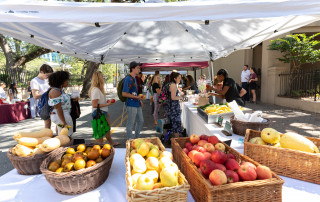 The College of Charleston Farmer's Market