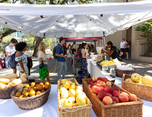 Farm to Campus: Find Fresh Food at CofC's Farmers Market