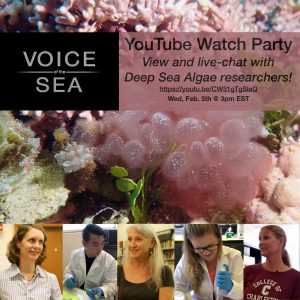 Voice of Sea YouTube watch party flyer