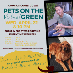 Pets on the virtual Green poster