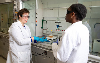 professor brooke van horn works with a student on research