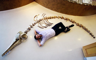 Bobby Boessenecker with the skeleton of the Ancient Dolphin Ankylorhiza