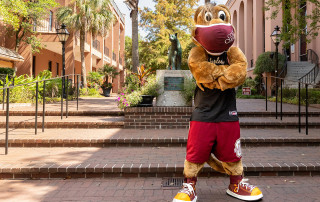 clyde the cougar wears a mask