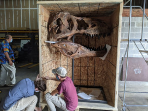 Central Stores Unloading Dinosaurs