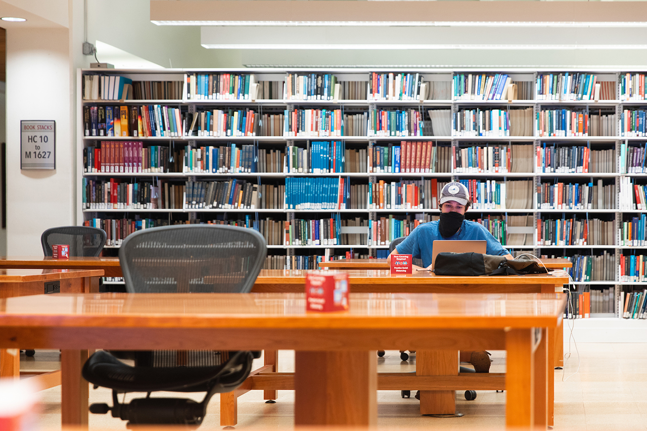 student studying in addlestone library