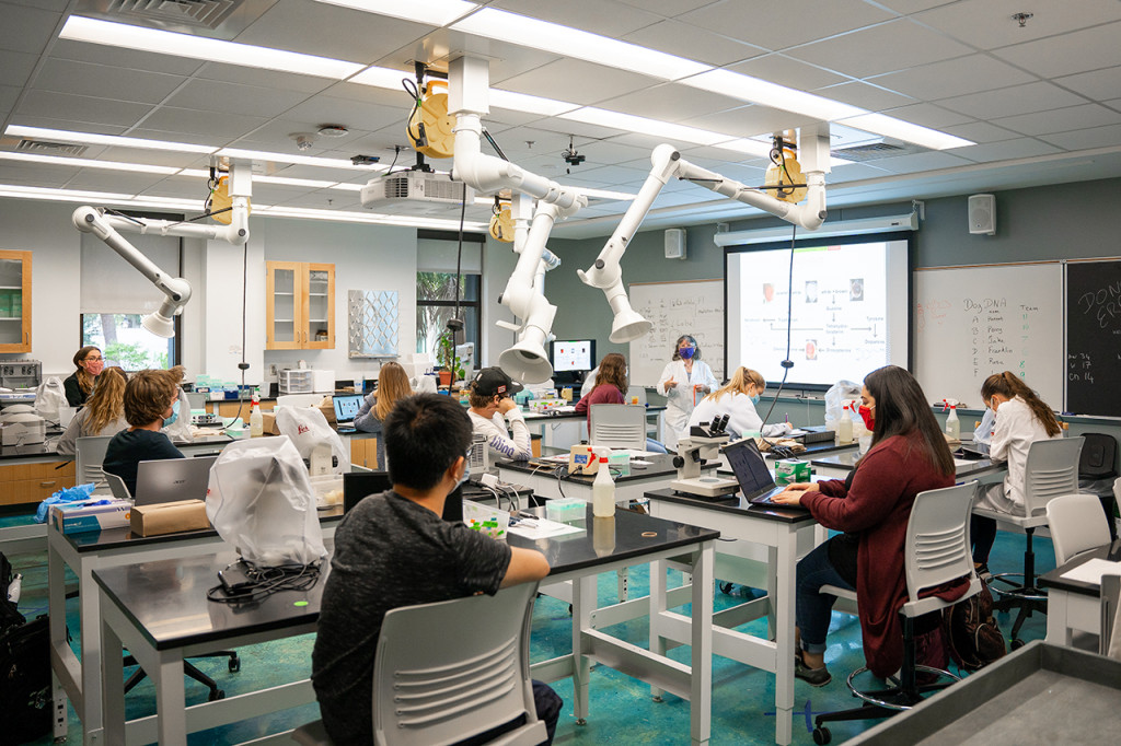 Students attend BIOL 305L 01 – Genetics Lab, taught by Agnes Ayme-Southgate in the Rita Hollings Science Center.