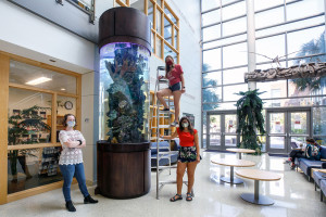 three students stand by the new saltwater aquarium in the school of sciences and mathematics building