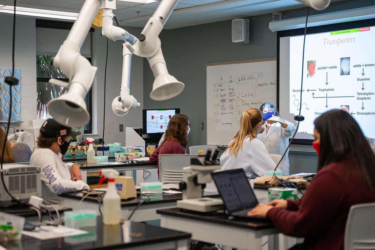 agnes ayme-southgate teaches her hybrid genetics lab