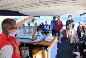 first year experience students take a trip in a boat on charleston harbor