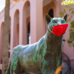 A statue of College of Charleston mascot Clyde the Cougar adorned with a facemask.