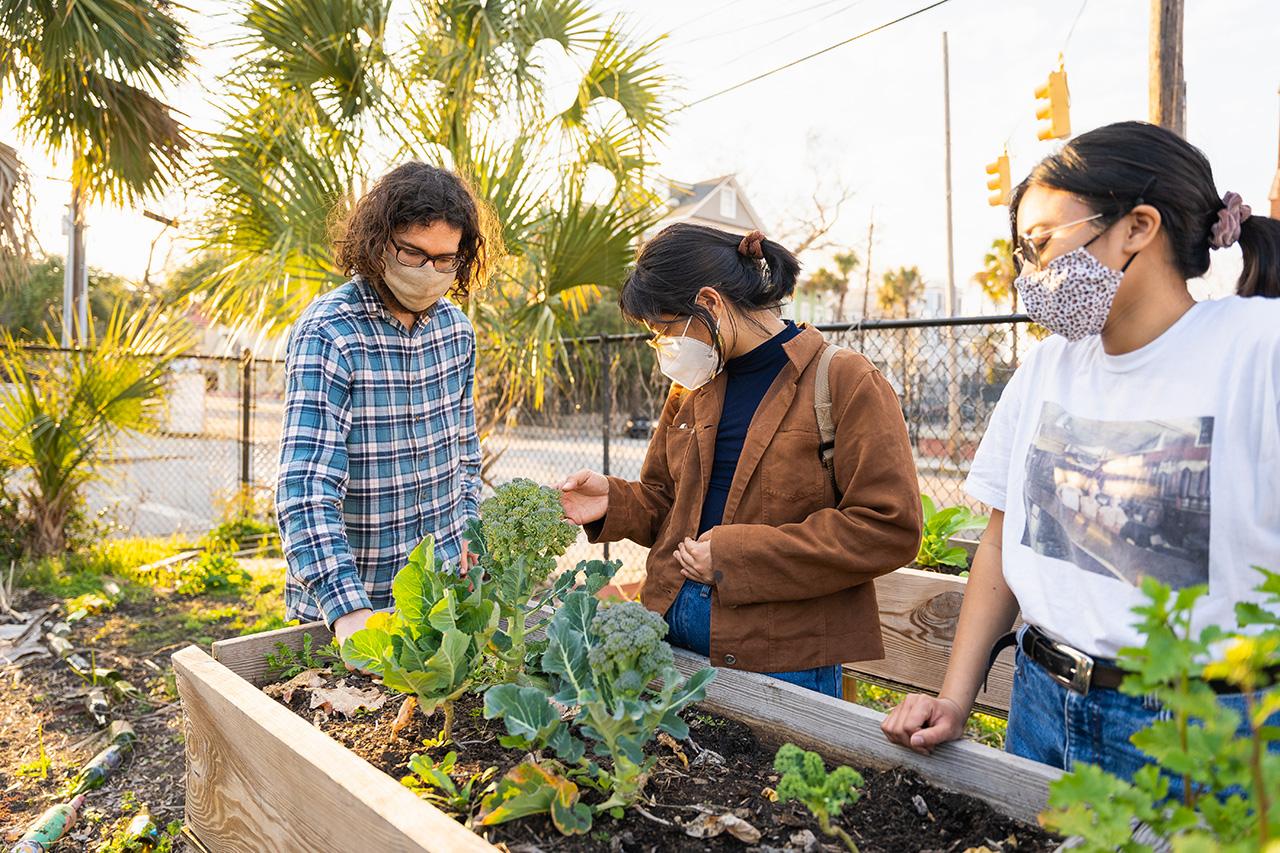Students volunteer at the Warren Place Community Garden.