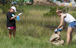 students pick up litter in a marsh