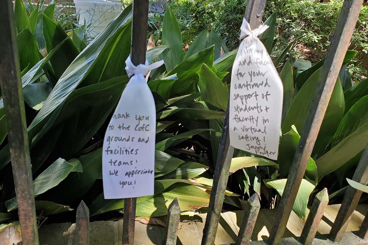 ribbons of gratitude