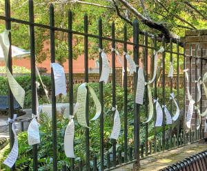 ribbons on fence