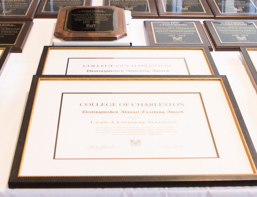 CofC Announces 2021 Distinguished Faculty Award Recipients