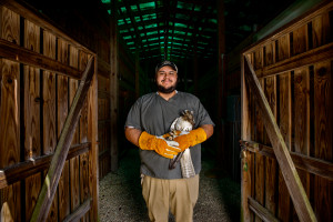 Marco Barrera, Bird's Of Prey Center Medical Clinic Intern, Current student at CofC