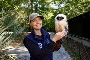 Audrey Poplin, Bird's Of Prey Center Educator/Husbandry Coordinator (Staff), CofC Grad - class of 2009