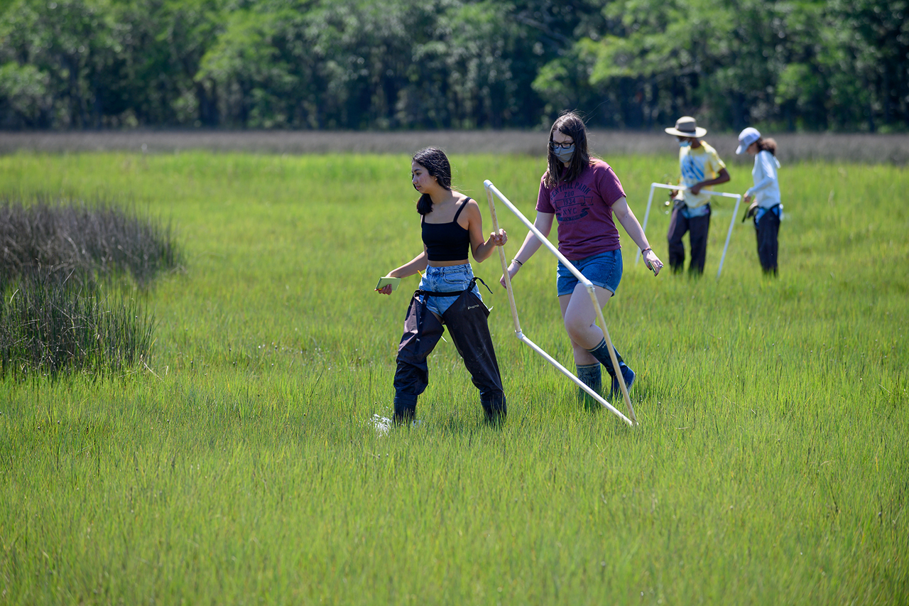 students in marsh