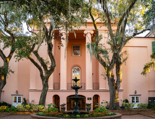CofC Welcomes New Faculty for the 2021-22 Academic Year