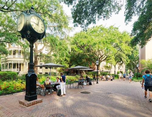 Princeton Review Names CofC a Top College